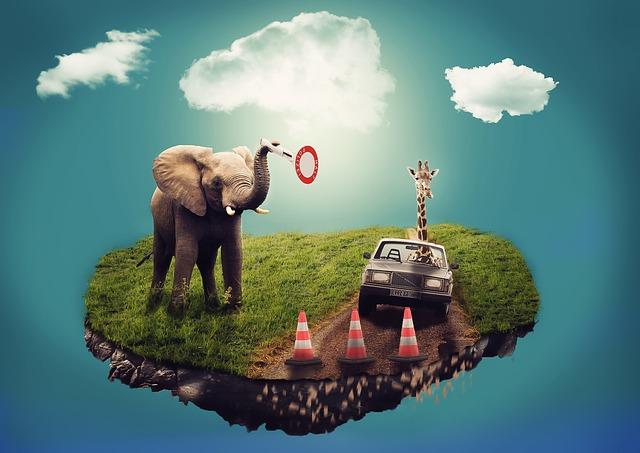 Traumdeutung, bIld Traum Elefant Auto