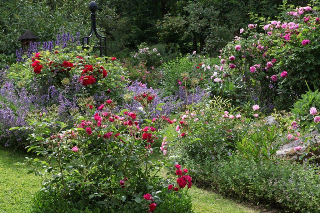 Woidroserl Garten