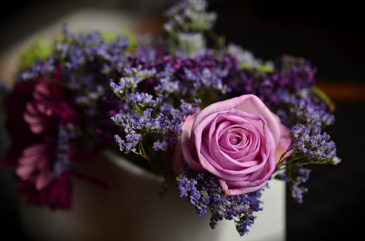 Geschenke für Rosenfreunde