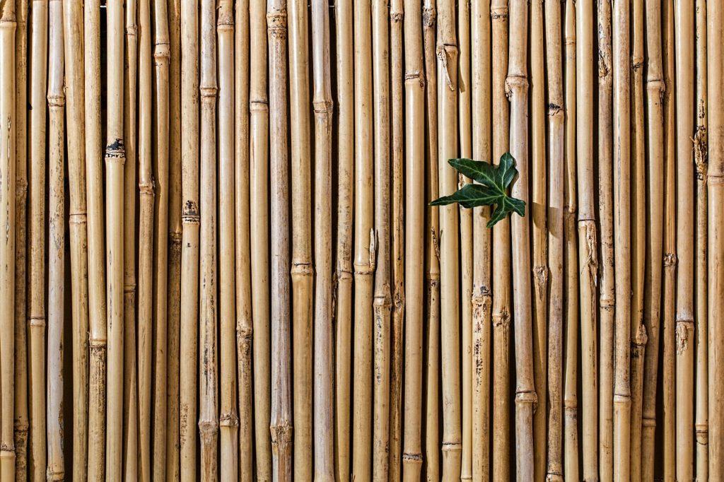 Sichtschutz Bambuszaun