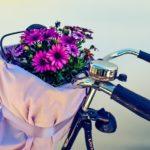 Fahrrad Frühlingscheck