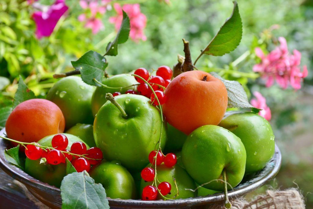 Äpfel sind Radikalfänger - und senken Cholesterin