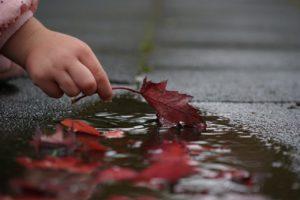 Kinderhand nimmt Herbstblatt aus einer Pfütze